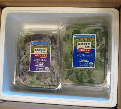 Free Earthbound Farms Salad